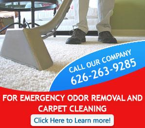 Contact Us | 626-263-9285 | Carpet Cleaning South Pasadena, CA